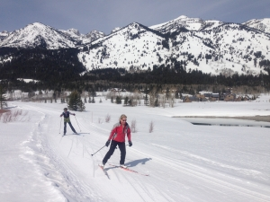 Learning to Skate Ski