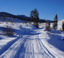 The Greater Yellowstone Cycle Trail: A New Local Adventure
