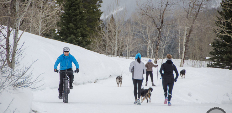 Snowmobiles Up Cache Creek vs Skiers, Fat Bikers, Walkers, Dogs, Wildlife? Q& A With Bridger-Teton US Forest Service