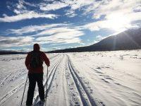 Trail: National Elk Refuge Road